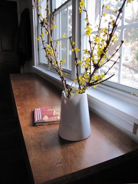 Spring Forsythia Branches | The Borrowed Abode