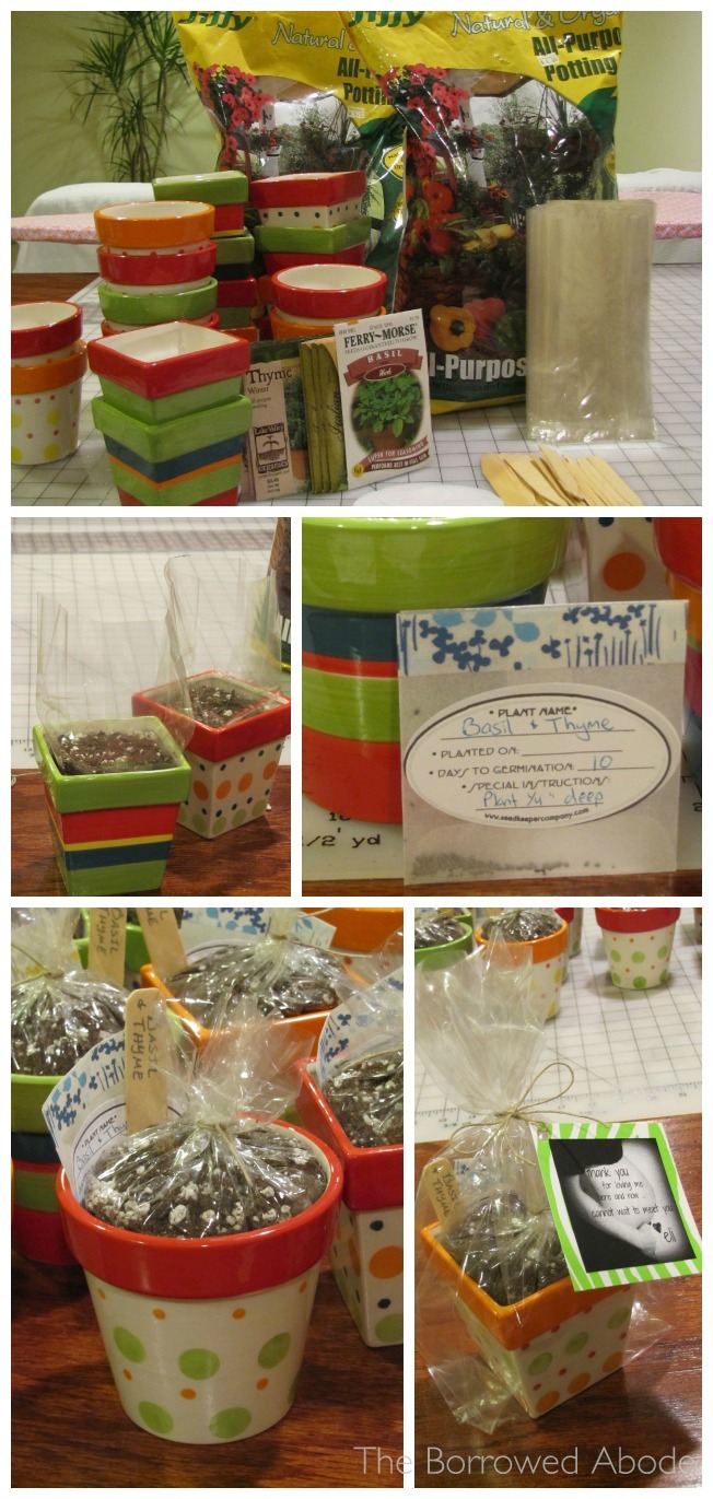 DIY Mini Herb Kit Party Favors | TheBorrowedAbode.com