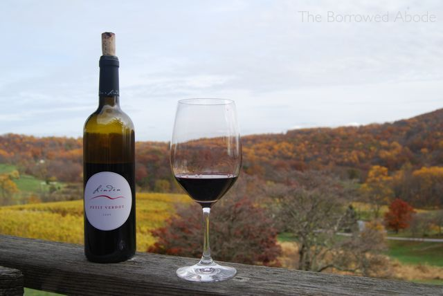 2009 Petit Verdot Linden Vineyards Oct 2012