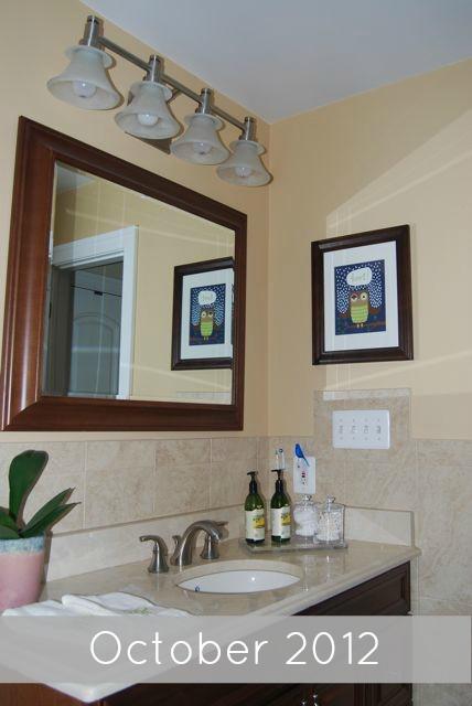 Bathroom Owl Art Nov 2012 | TheBorrowedAbode.com