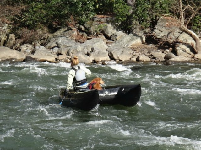 Woman Whitewater Kayak Dog | TheBorrowedAbode.com