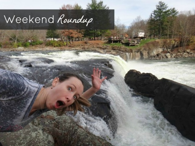 Weekend Roundup Nov 2012 | TheBorrowedAbode.com