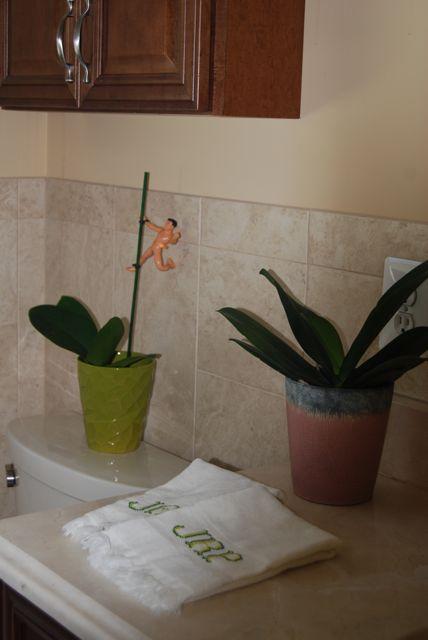 Bathroom Nov 2012 Naked Man | TheBorrowedAbode.com
