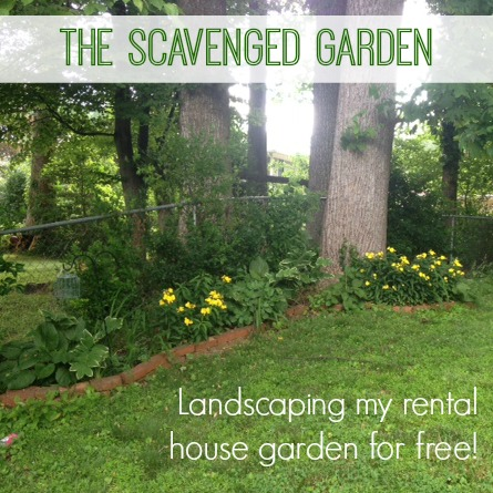 Scavenged Garden Title Image