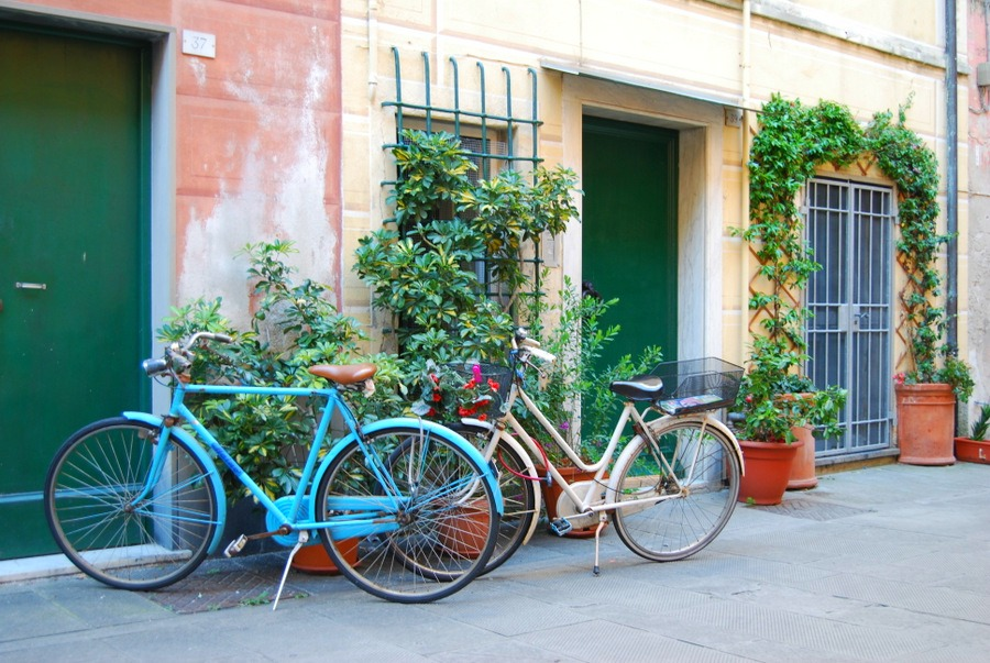 2016 Italy Levanto Cinque Terre Bikes Doorways