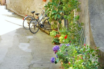 2016 Italy Bonassola Cinque Terre Liguria Bicycles Flowers