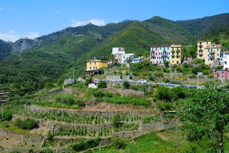 2016 Italy Corniglia Cinque Terre Riviera Terraced Vineyards