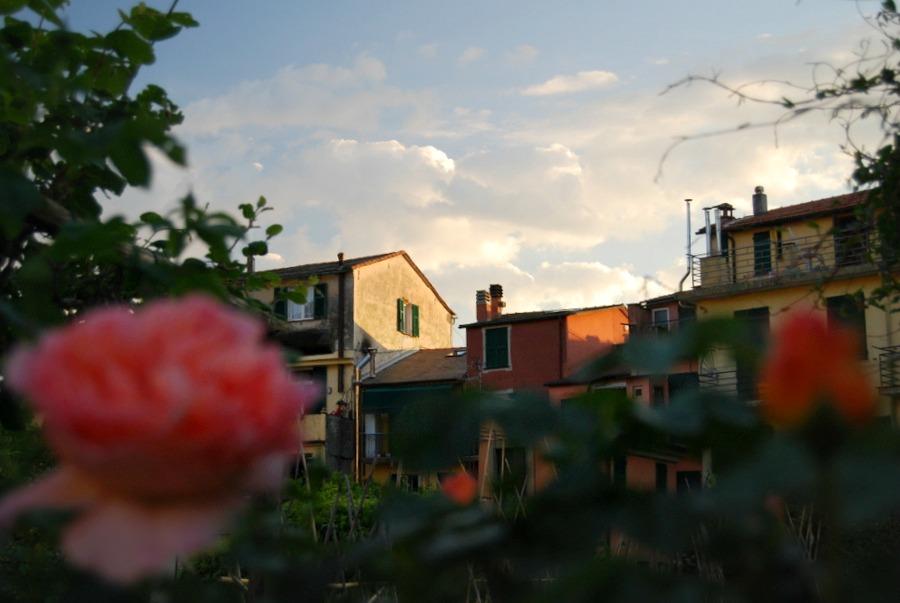 2016 Italy Levanto Sunset View Garden