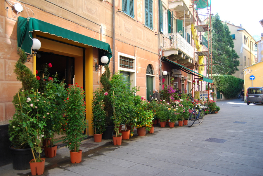 2016 Italy Levanto Potted Gardens Old Town
